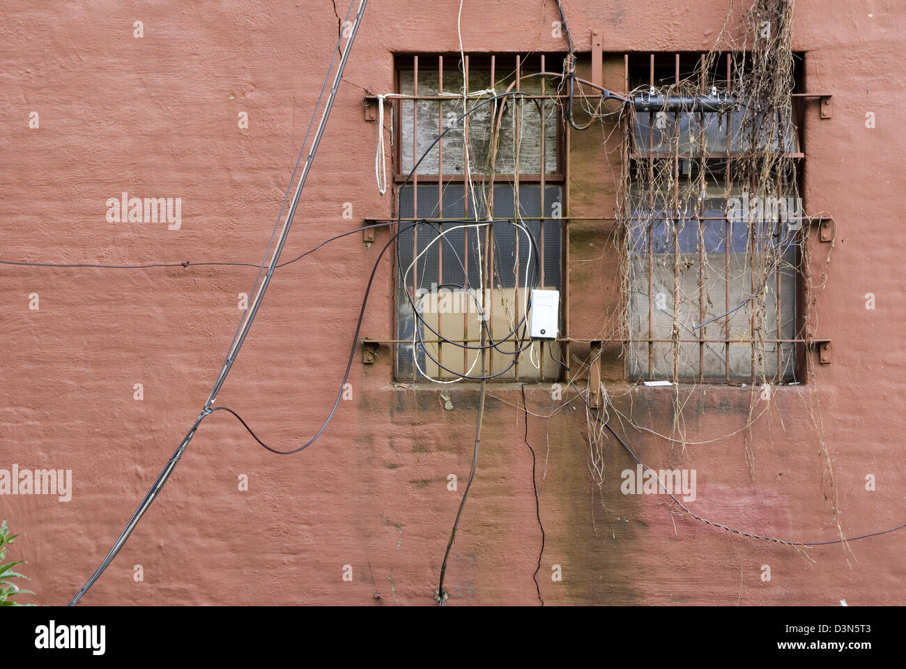 An old window with bars covered in vines, weeds and old wires - Stock Image