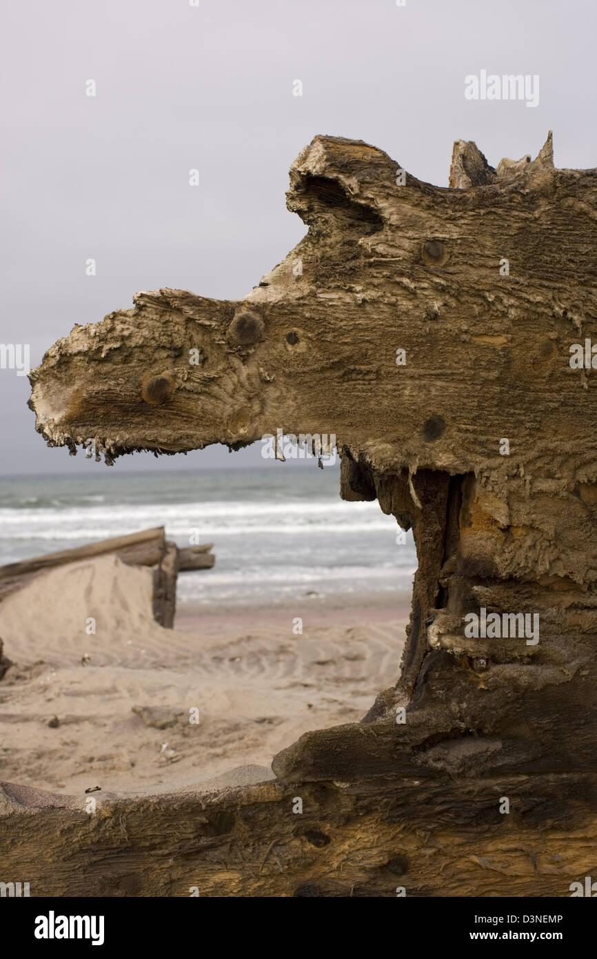 Wreckage of an old fishing trawler, Mowe Bay, Namibia - Stock Image