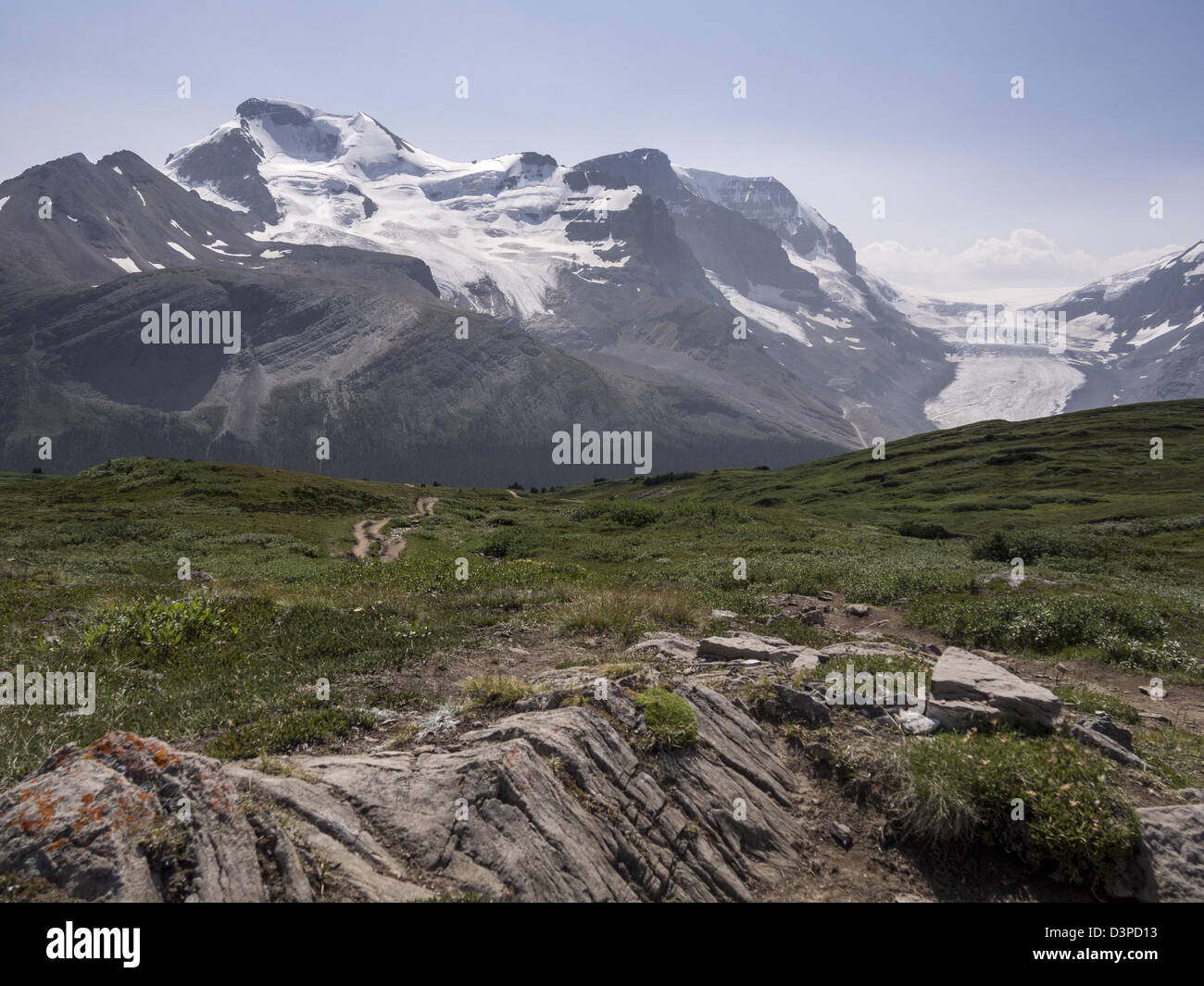 Toward Athabasca. Hikers follow the winding path on the Wilcox Pass. Mount Athabasca and the Athabasca Glacier in - Stock Image