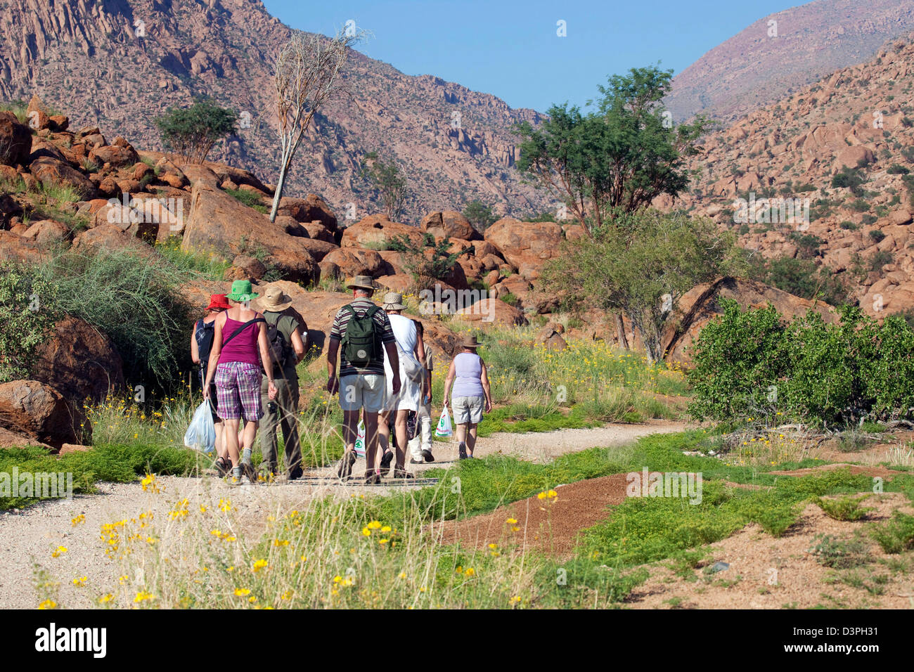 Elderly tourists on excursion hiking along trail at Brandberg Mountain, Damaraland, Namibia, South Africa - Stock Image