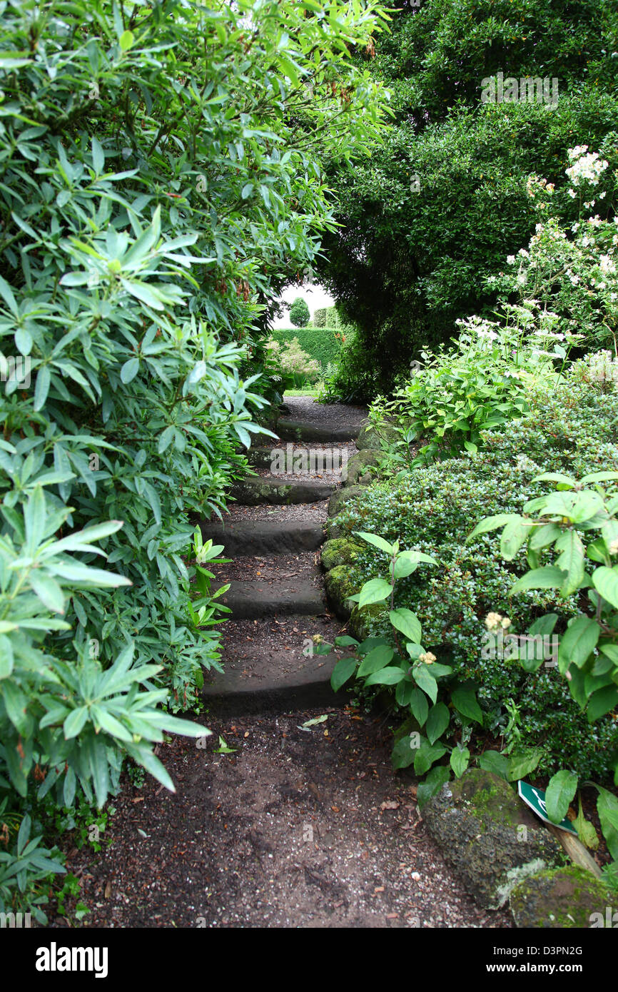 Steps and archway with shrubs and trees at Arley Hall Gardens Cheshire England UK - Stock Image