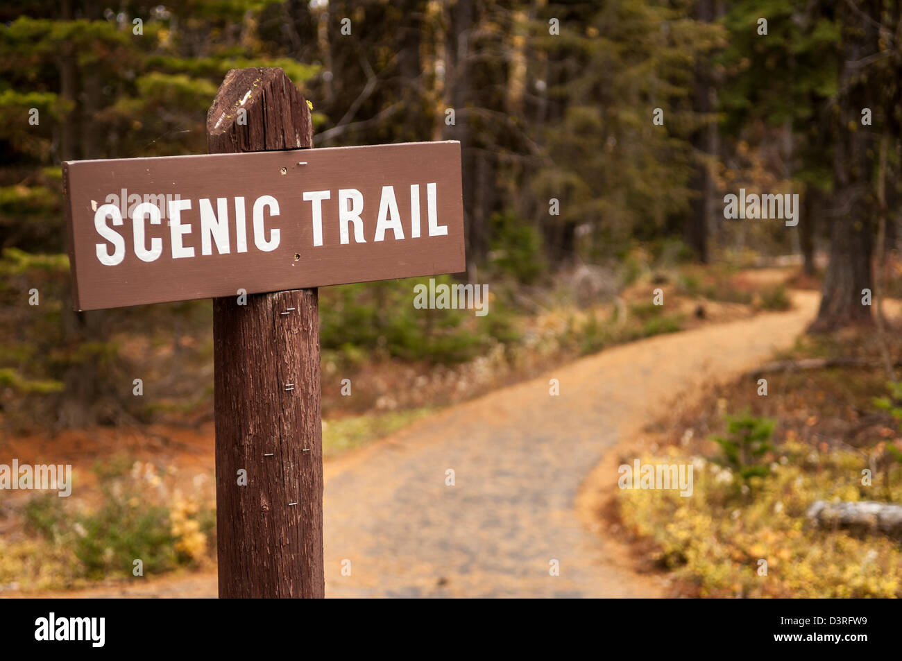 'Scenic Trail' sign at Sherman Pass, Colville National Forest, Washington. - Stock Image