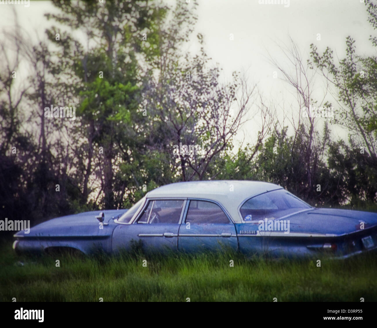 Old Blue Car parked in the tall grass, awaiting restoration - Stock Image