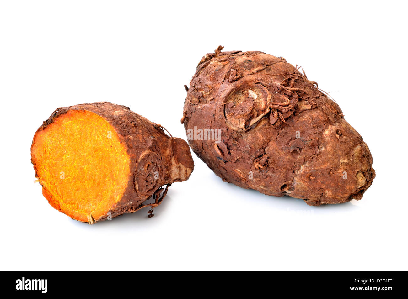 turmeric-root-on-a-white-background-close-up-D3T4FT.jpg