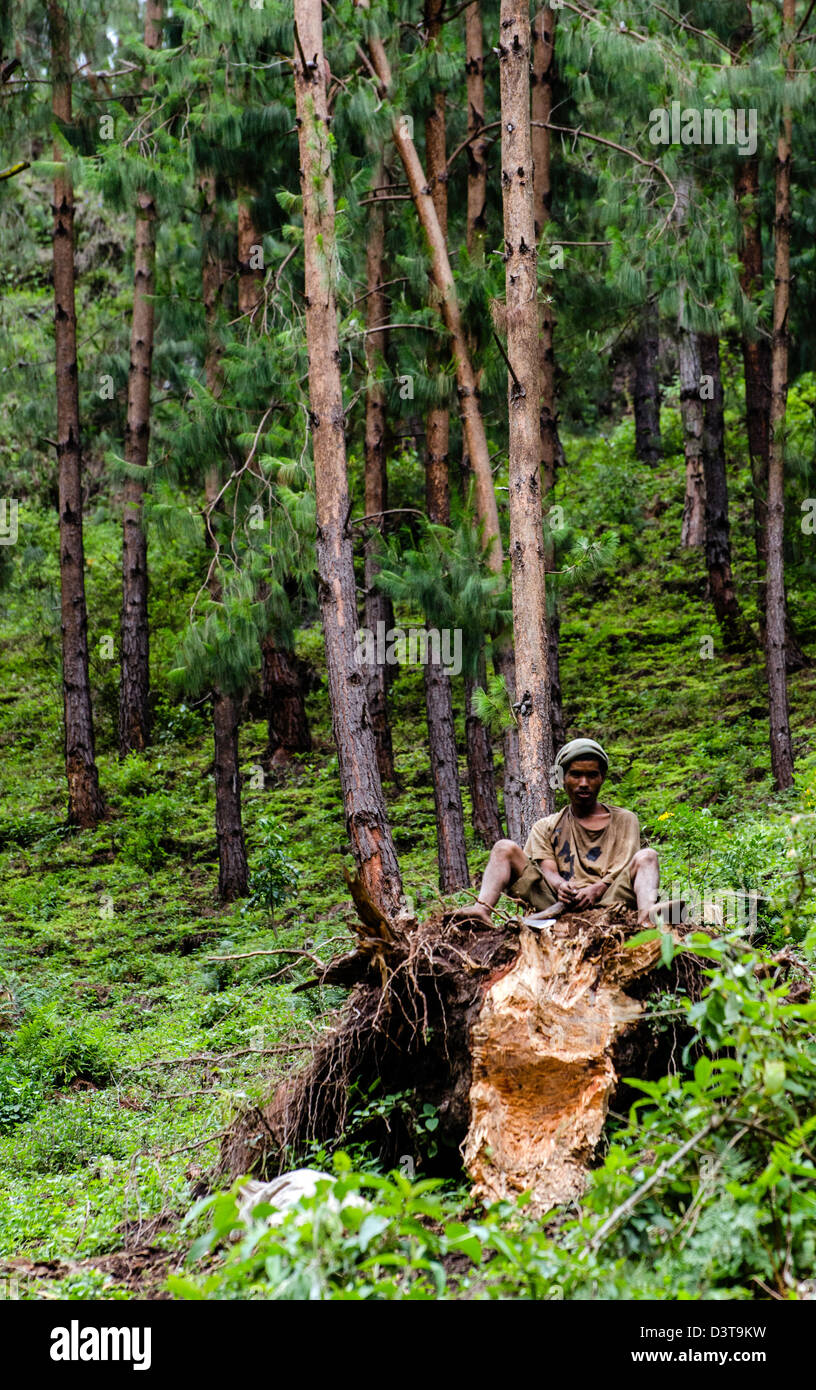 Malagasy man in the forest by the lake Tritriva southwest-central Madagascar located near the village of Belazao - Stock Image