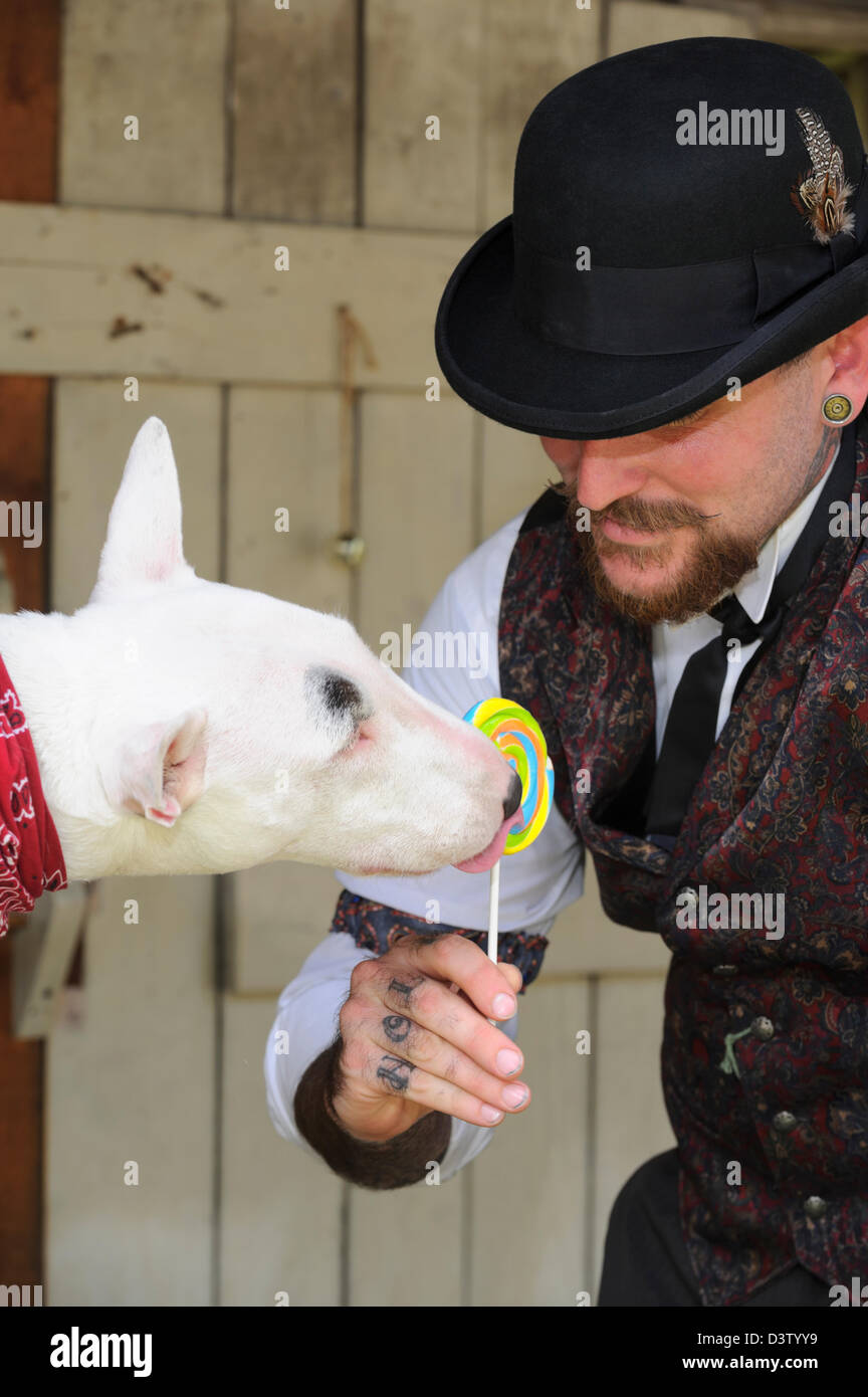 Happy Victorian man having fun with his bull terrier dog licking a lollipop, silly pets. - Stock Image
