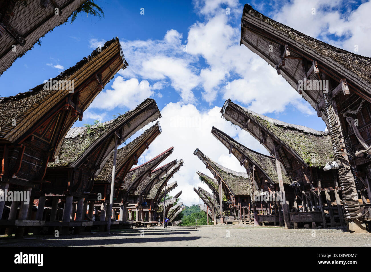 View of a traditional Tana Toraja village with typical houses, Sulawesi, Indonesia - Stock Image