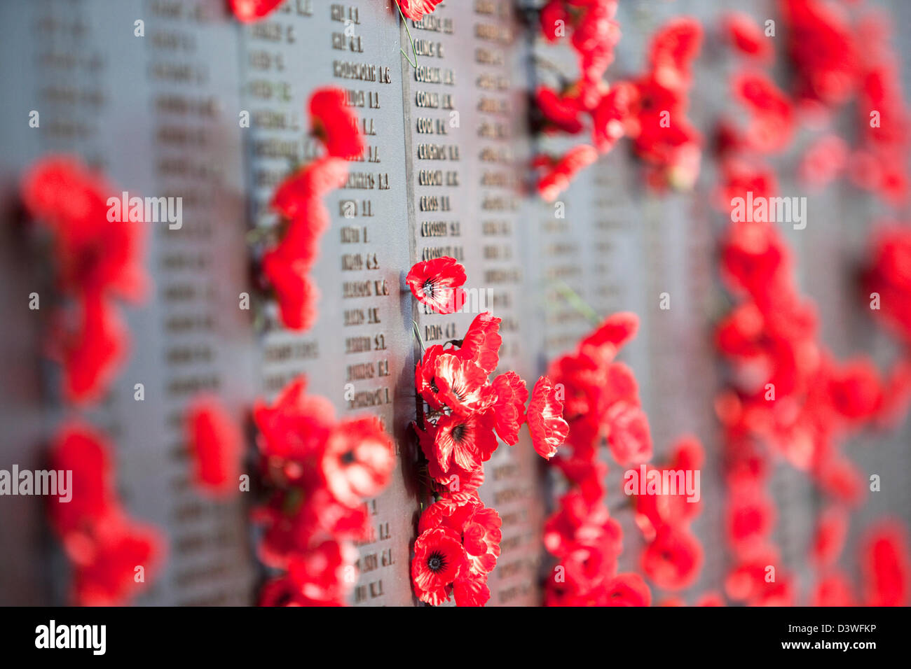Poppies adorning the Roll of Honour walls in the Australian War Memorial. Canberra, Australian Capital Territory, - Stock Image