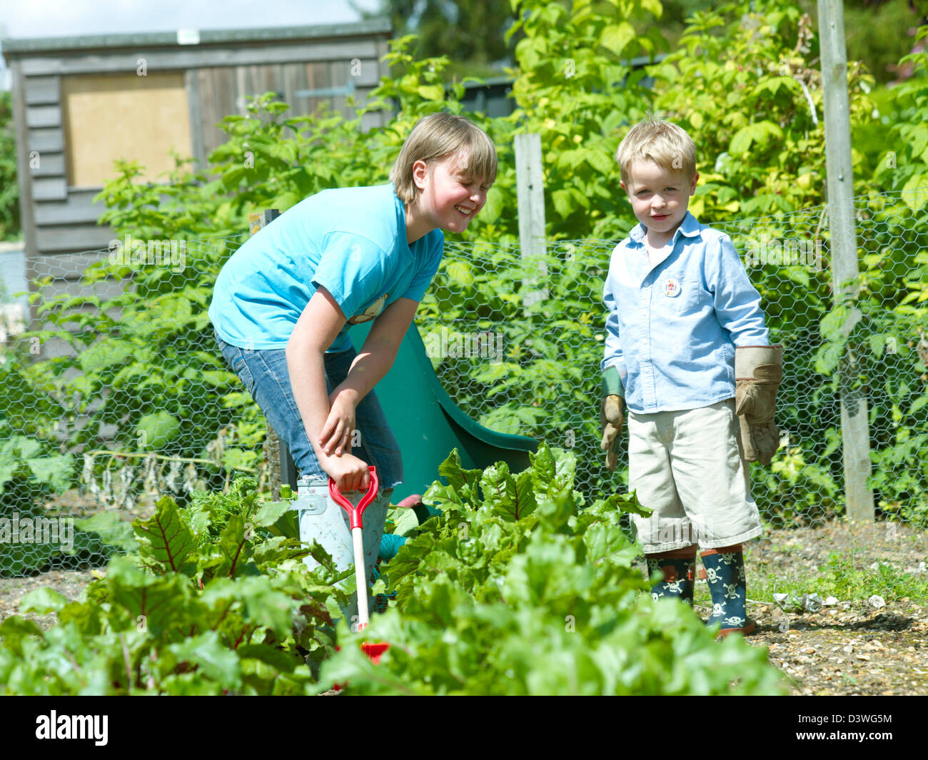 Children at the allotment - Stock Image