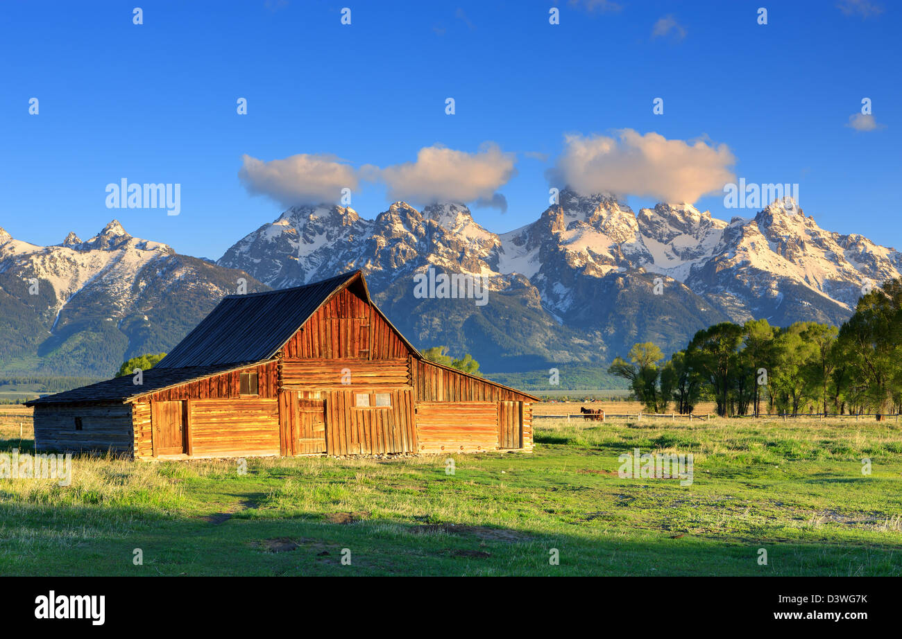 Mormon Row is a line of homestead complexes along the Jackson-Moran Road near the southeast corner of Grand Teton - Stock Image