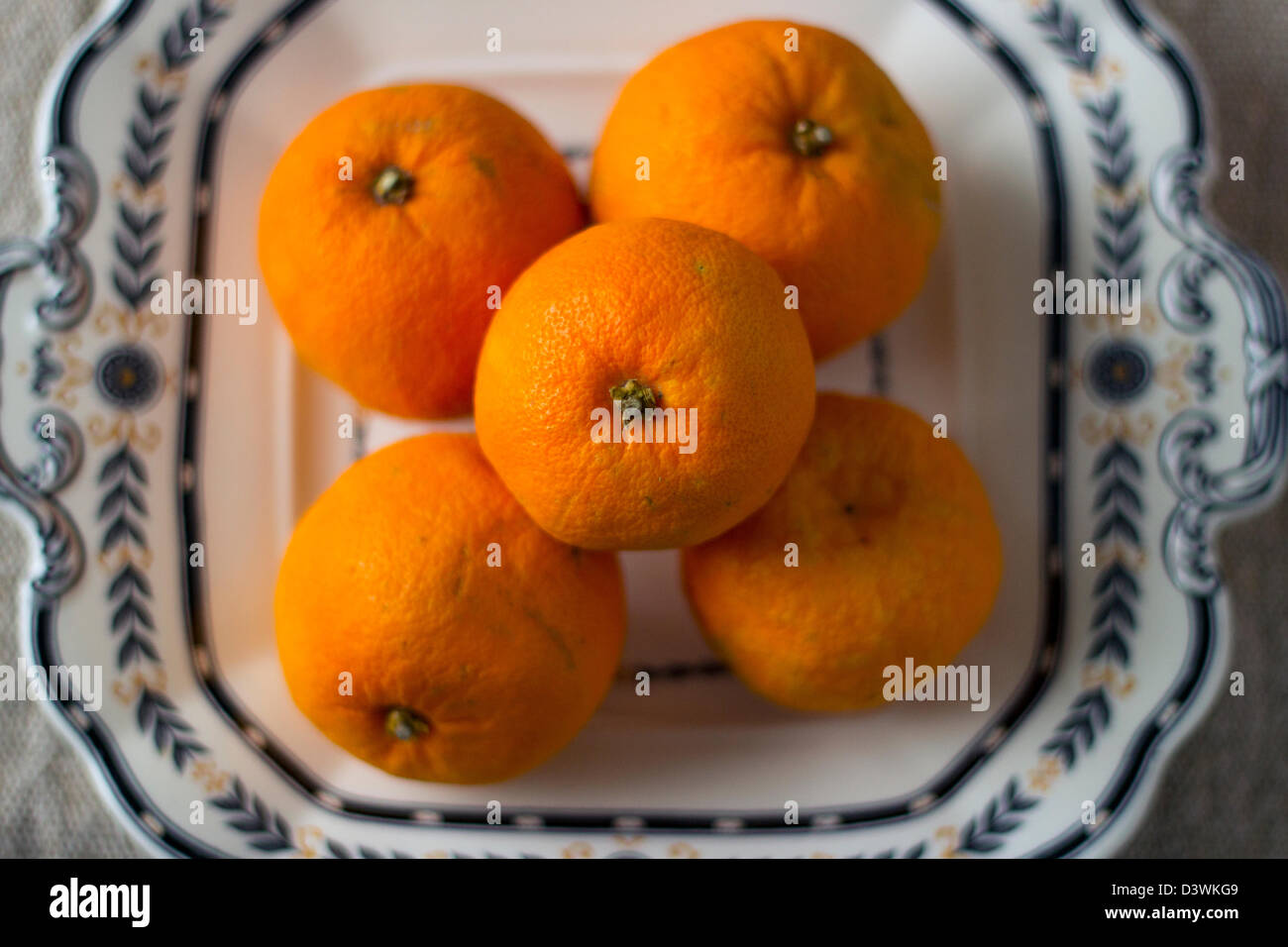 Oranges on a vintage Wedgewood plate. Stock Photo