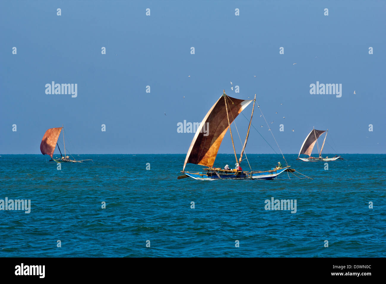THREE CATAMARANS IN THE MORNING FISHING FOR PRAWNS IN THE INDIAN OCEAN NEAR TO THE BEACHES OF SRI LANKA Stock Photo