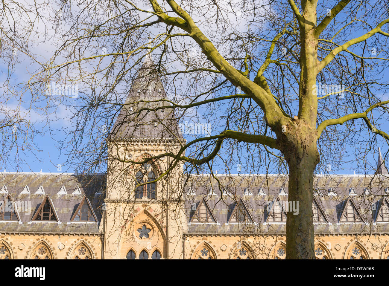 Facade of natural history and Pitt Rivers museum Oxford University England UK - Stock Image