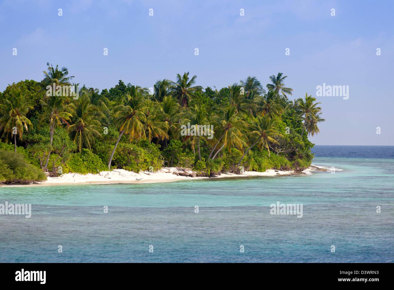 Desert Island, Ari Atoll, Maldives - Stock Image