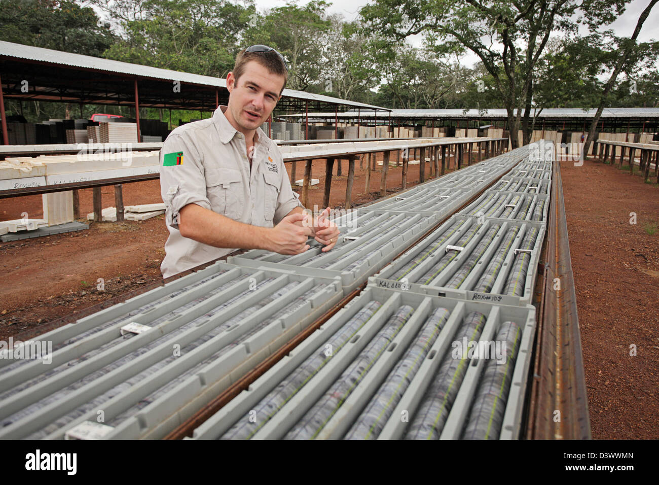 Geologist and core drilling samples stacked in trays - Stock Image