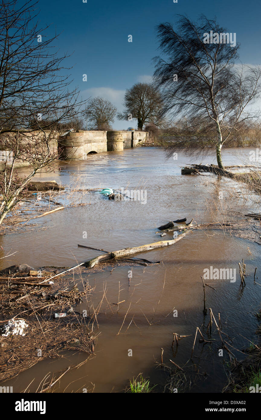 Rubbish collecting at the edge of floodwater. UK - Stock Image