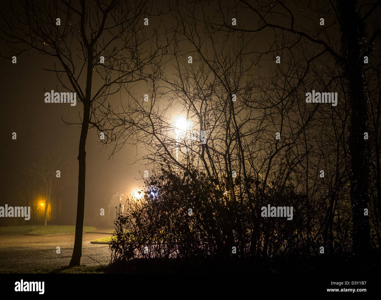 Street lights illuminate trees and bushes on a cold, damp, misty evening, WOrcestershire, UK - Stock Image