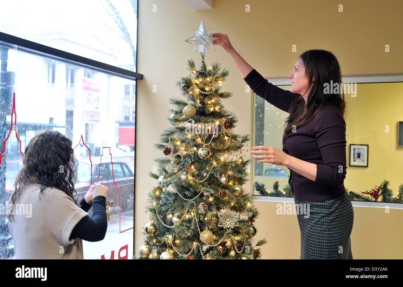 people decorating christmas tree trimming in an office in ct usa