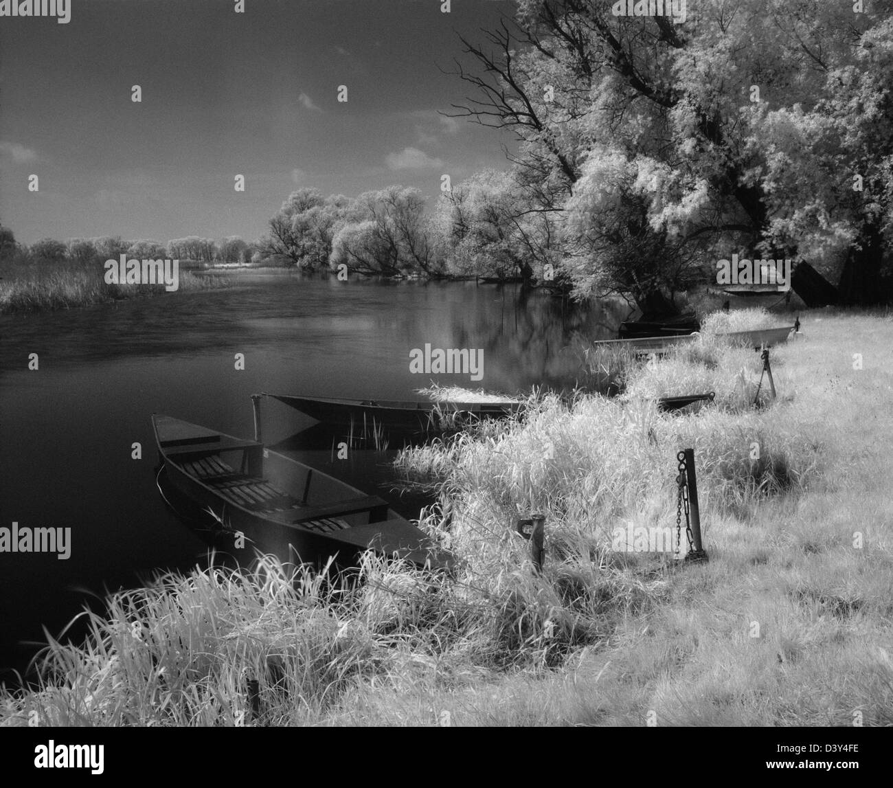 Jerchel, Germany, black and white infrared photograph: Havel landscape - Stock Image