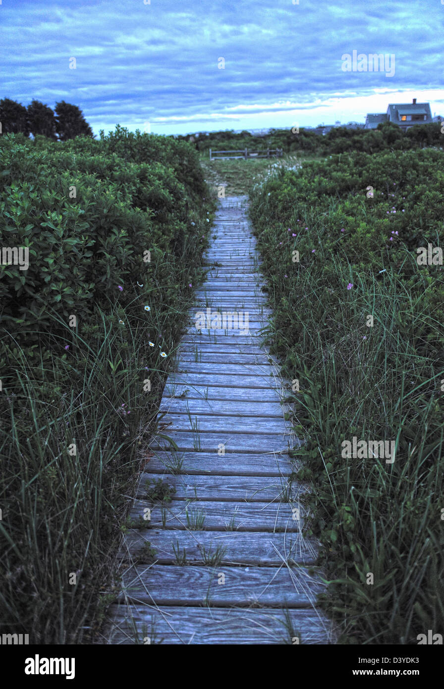 Path to beach from beach house in the distance, Madaket Harbor, Nantucket Island - Stock Image