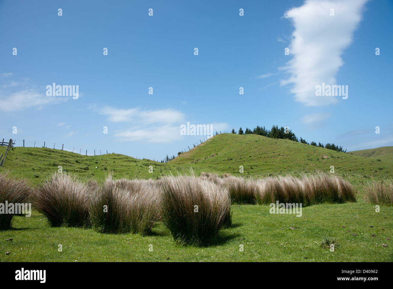 Wisp of stratus cloud above a typical New Zealand rural landscape. Stock Photo