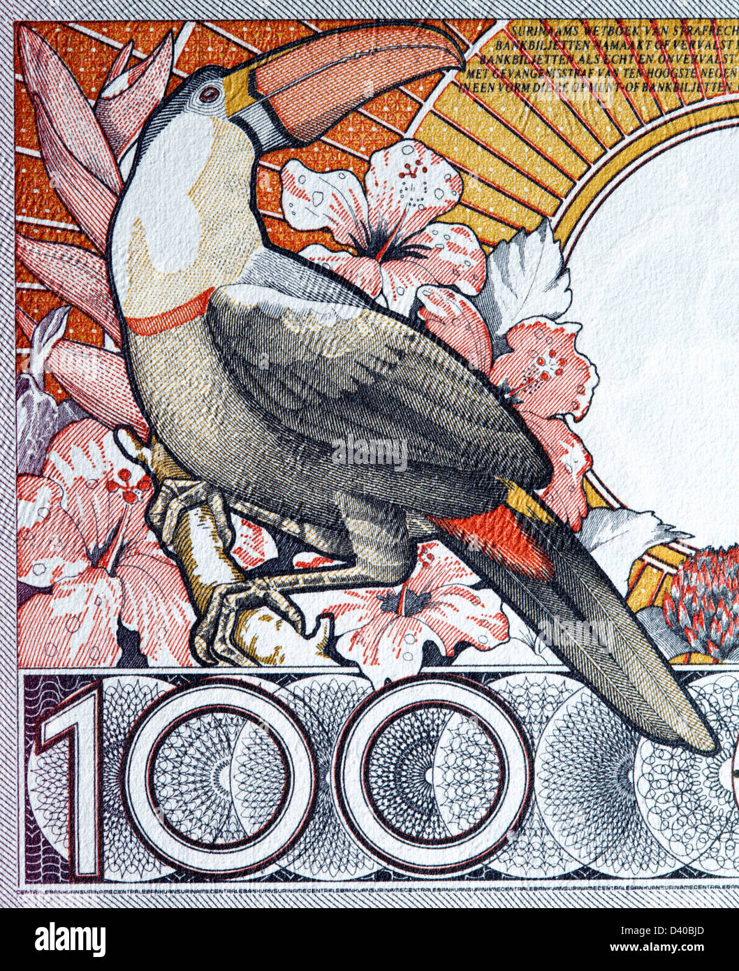 Toucan from 100 Gulden banknote, Suriname, 1988 - Stock Image