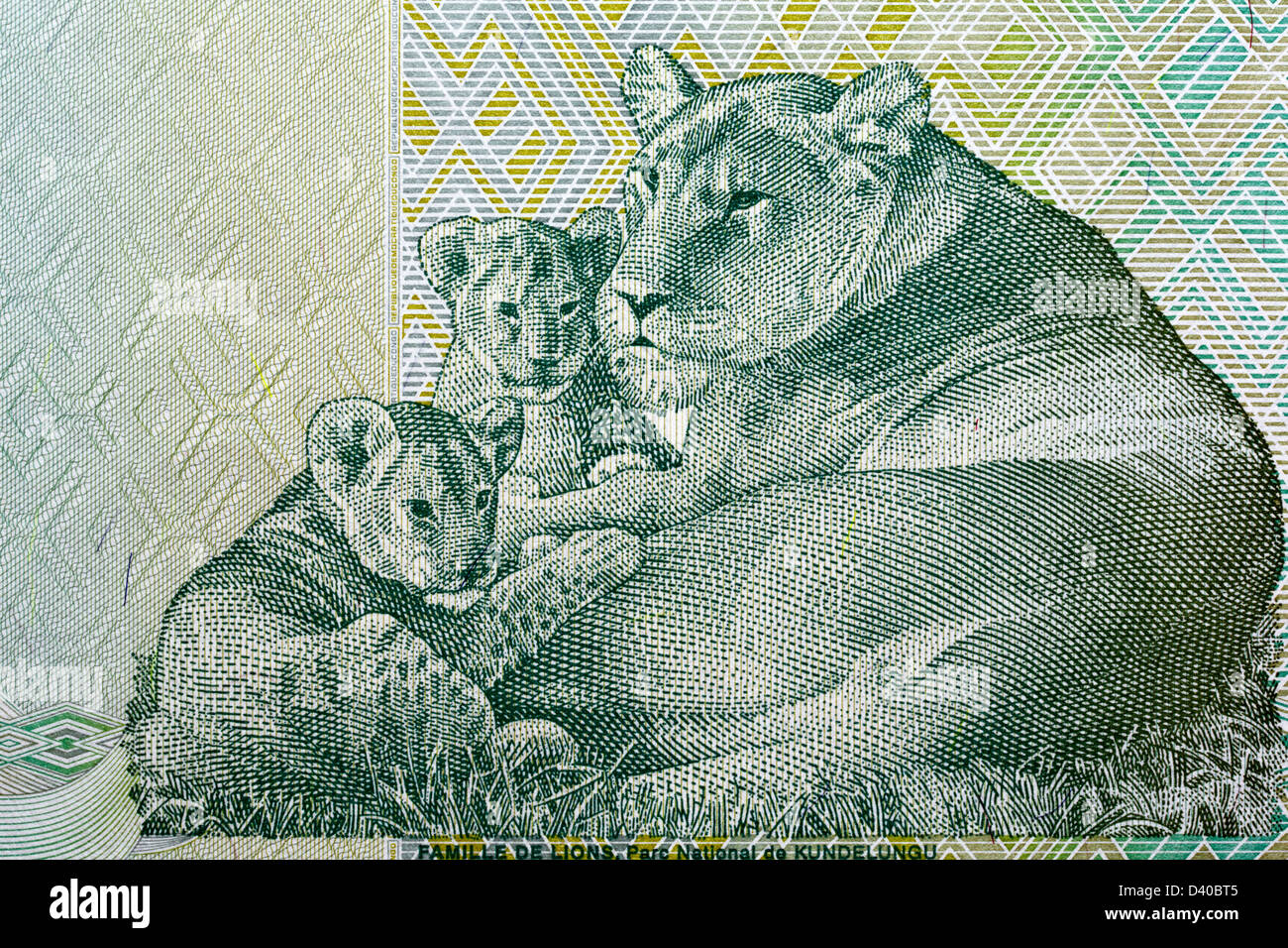 Lion with kittens from 20 Francs banknote, Congo, 2003 - Stock Image