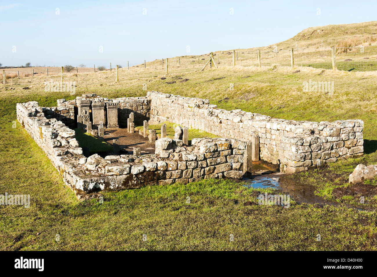 The Roman Temple of Mithras with Replica Stone Altars at Brocolitia Hadrians Wall near Chollerford Northumberland - Stock Image