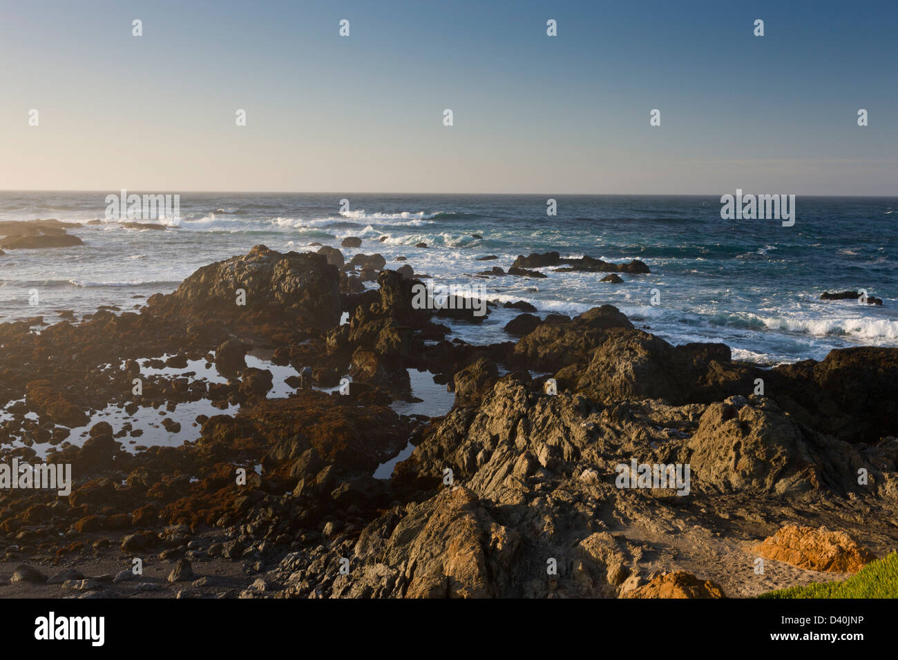 Rocky promontory with tidepools on the North California coast at MacKerricher State Park, California, USA - Stock Image