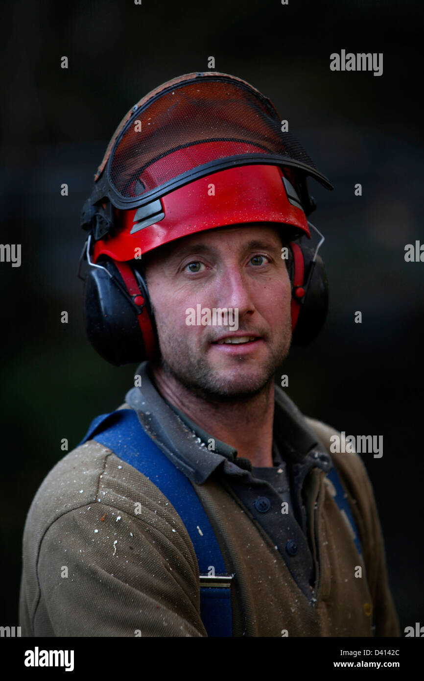 portrait of a forestry worker with helmet - Stock Image