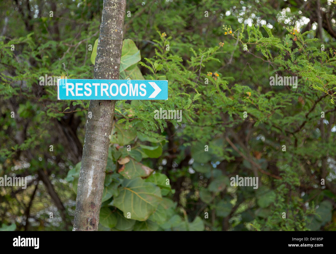 Blue sign pointing way in garden to restrooms or toilets - Stock Image