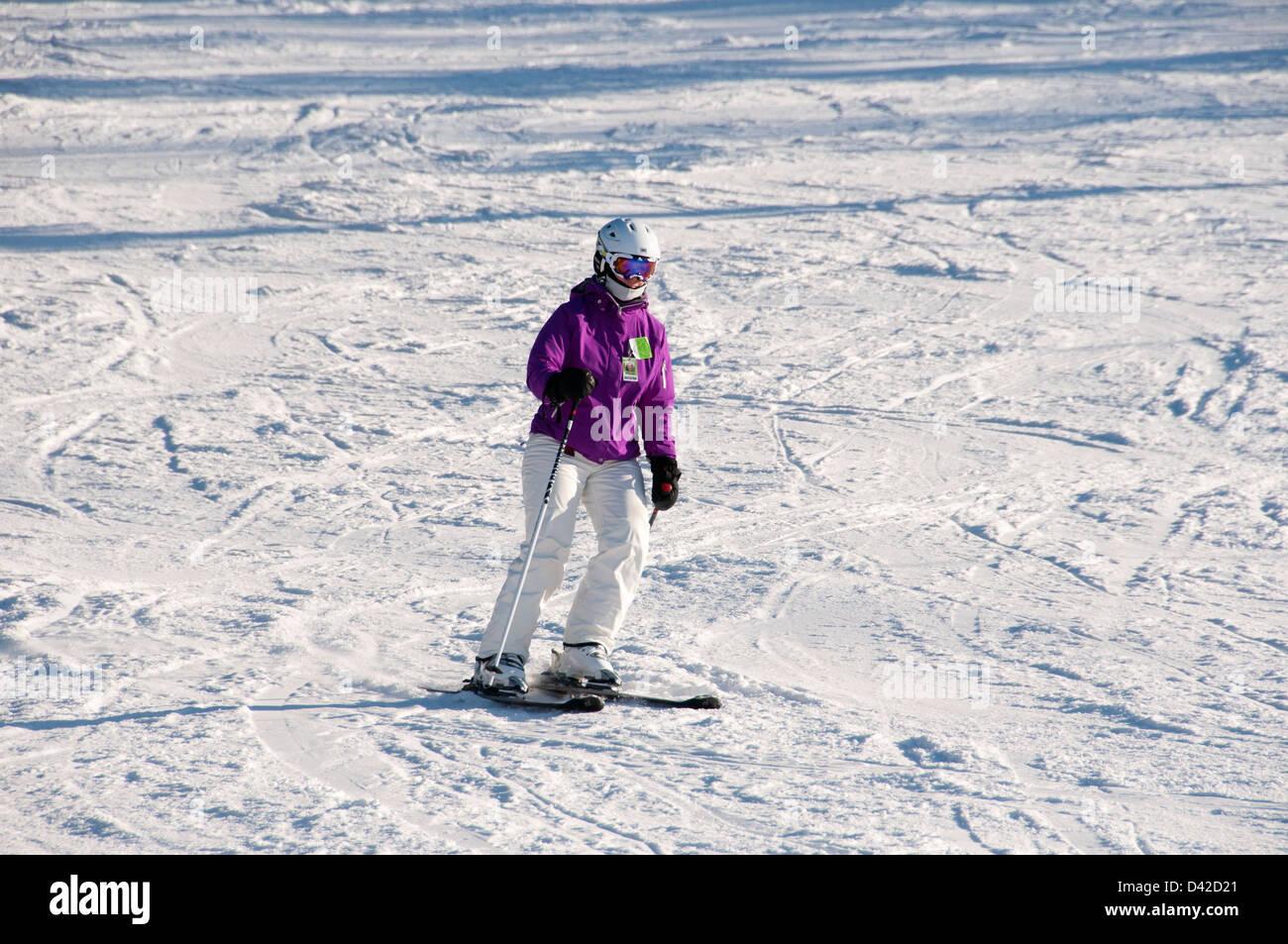 Skier Mont Saint Bruno Quebec Canada - Stock Image