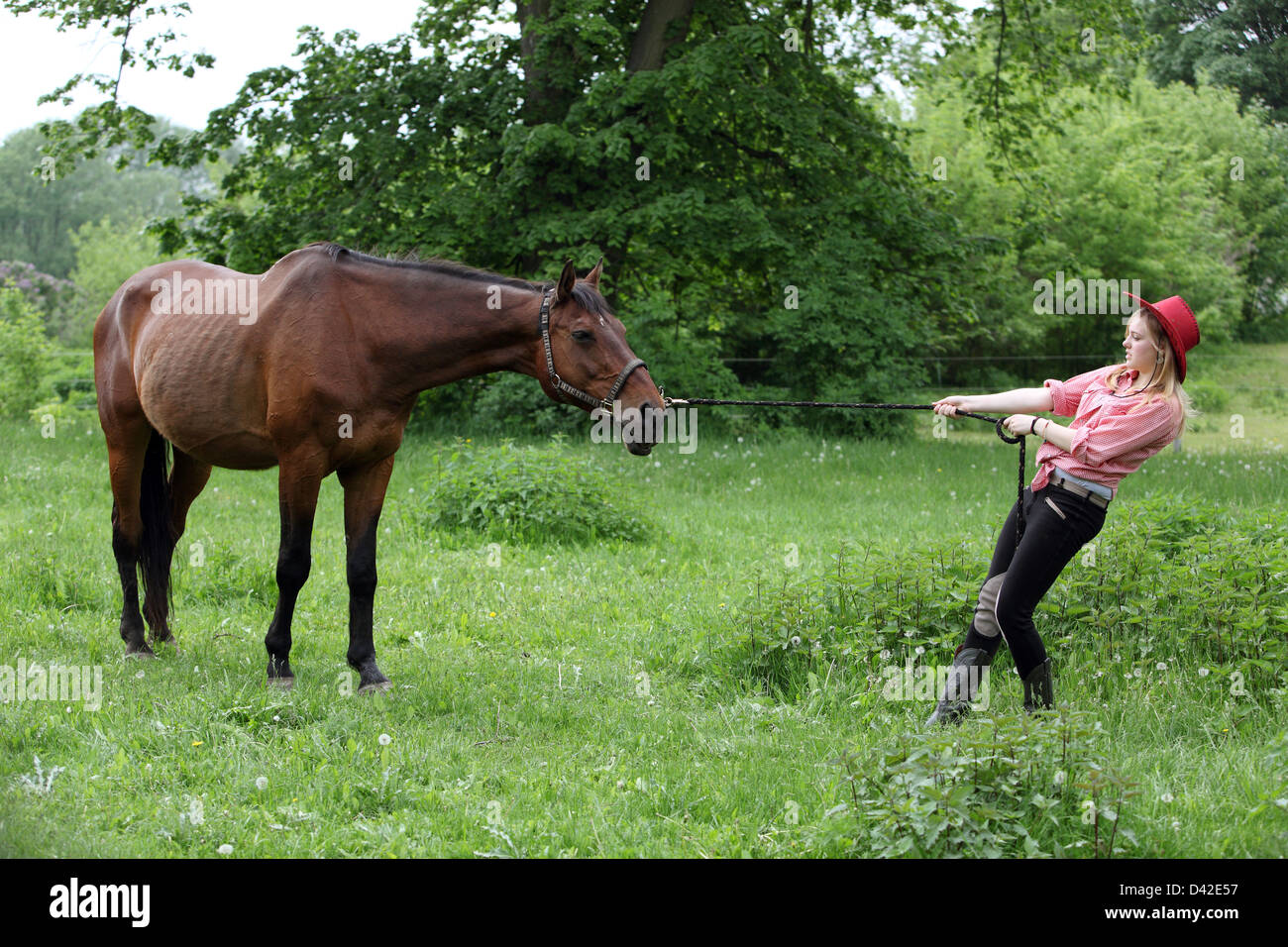 Muehlenbeck, girls with cowboy tries her horse from the pasture to pick up - Stock Image