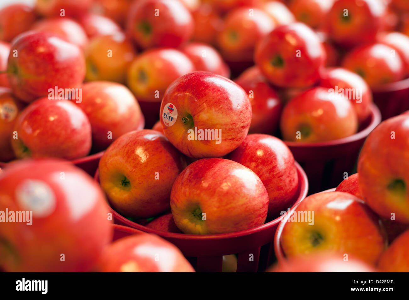 apples on display at a farmers market - Stock Image