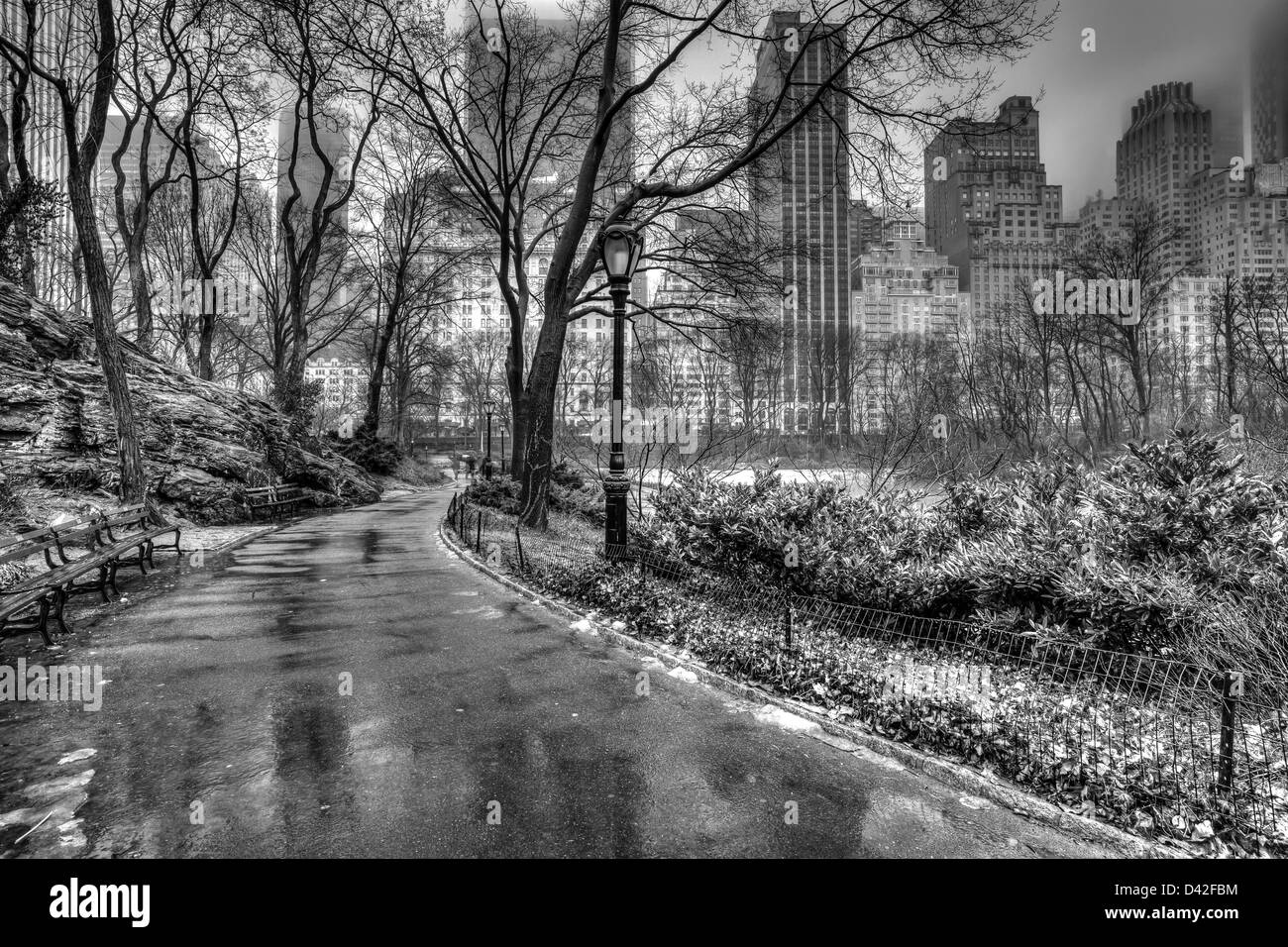 Central Park New York City After Rain Storm On Sidewalk