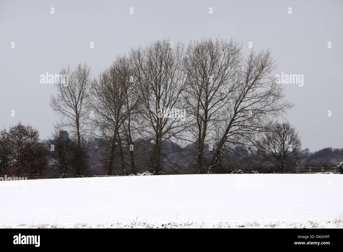 BISHOP'S STORTFORD HERTFORDSHIRE SNOW FIELD. UK. Stock Photo