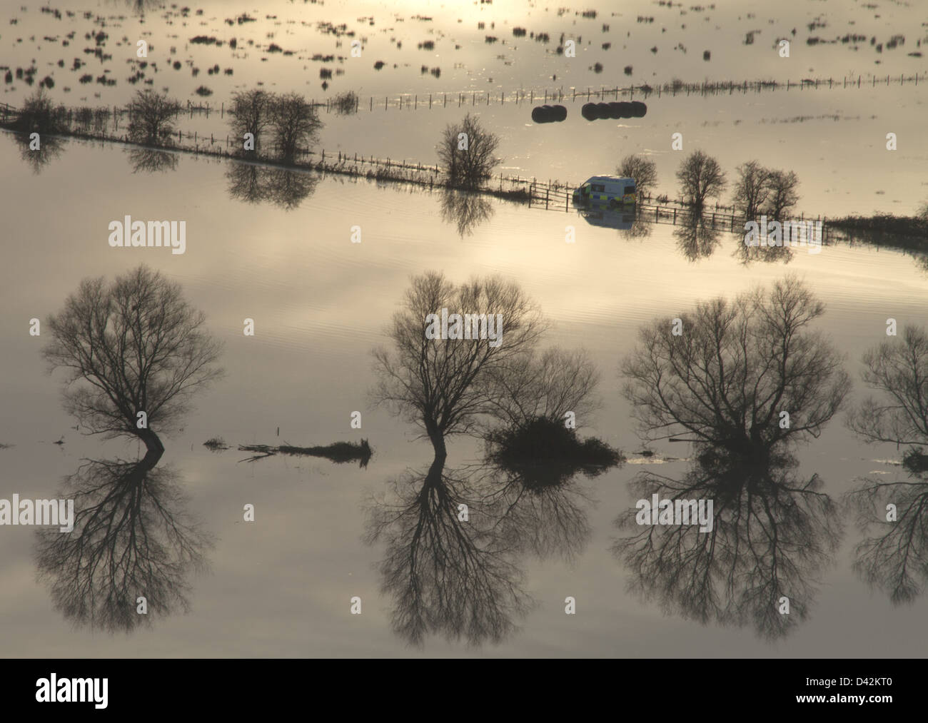 Trees in flooded fields south of Glastonbury, Somerset during floods caused by heavy rain in November 2012 Stock Photo