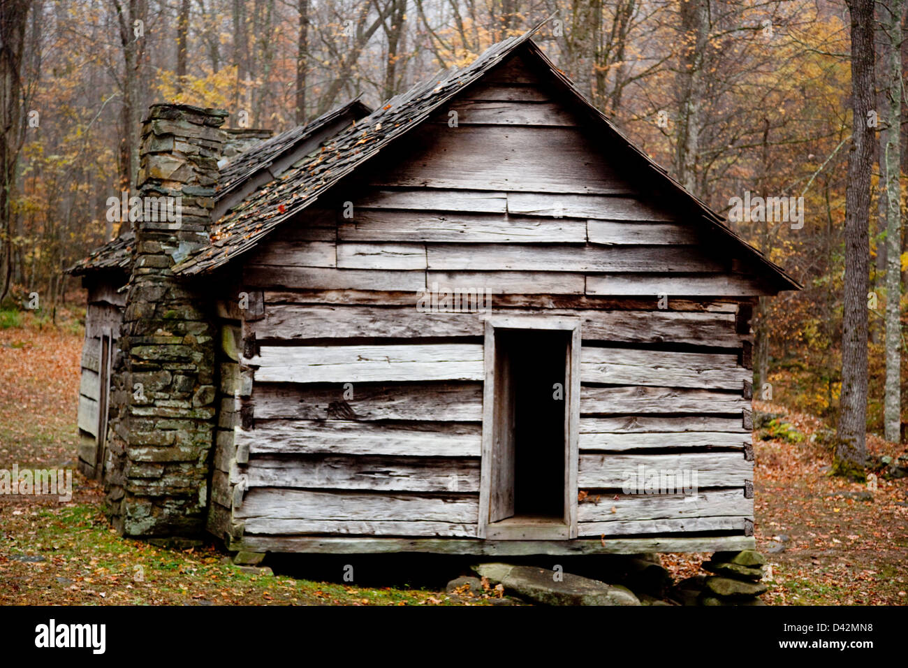 Old Rustic Log Cabin With The Fall Woods In The Background