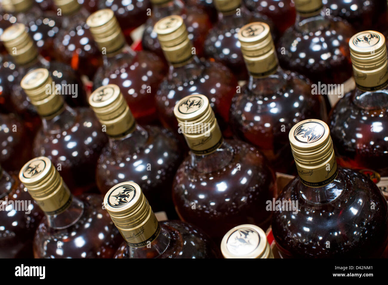 Bacardi rum on display at a costco wholesale warehouse club stock bacardi rum on display at a costco wholesale warehouse club stock photo 54150657 alamy thecheapjerseys Images