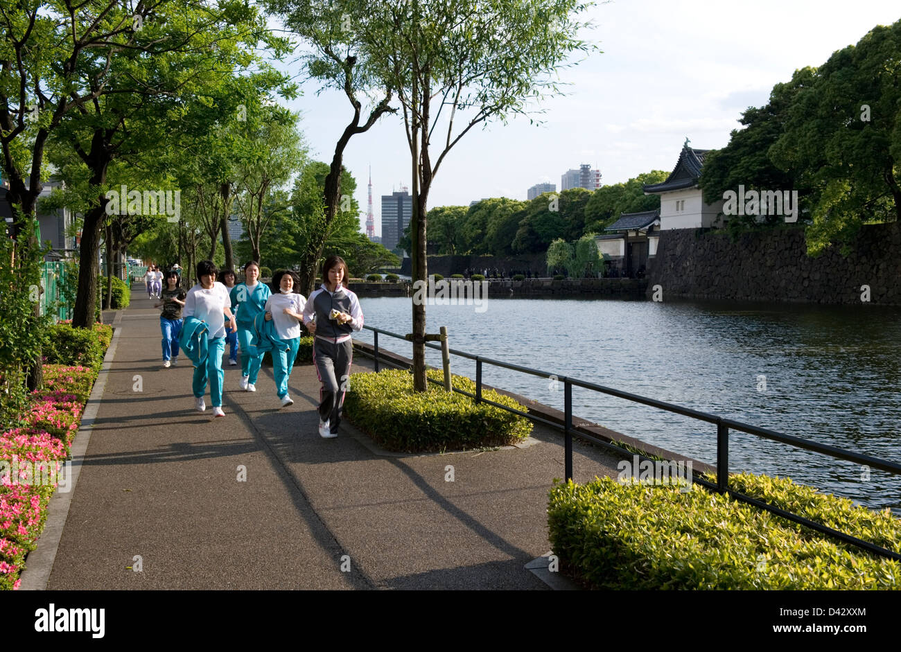 Female joggers taking laps around 5-kilometer outer moat course surrounding Imperial Palace, site of old Edo Castle - Stock Image