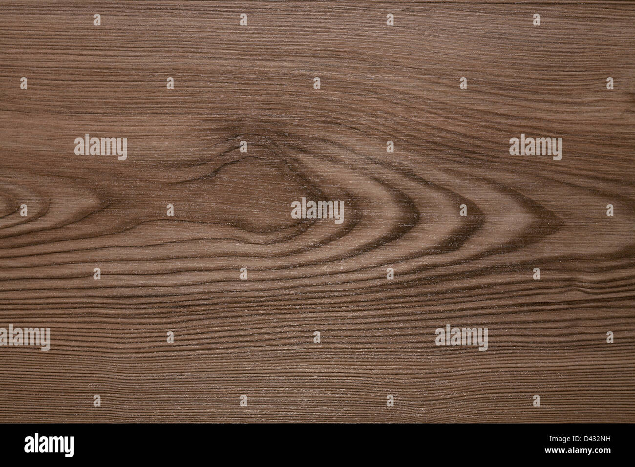 The texture of the wood planks from the old oak tree - Stock Image