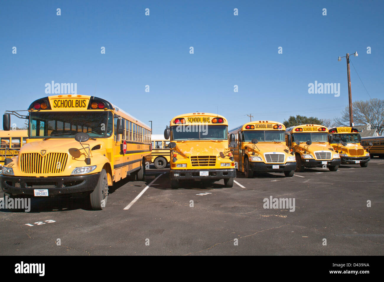 Public school buses lined up and parked in school bus parking lot Stock Photo
