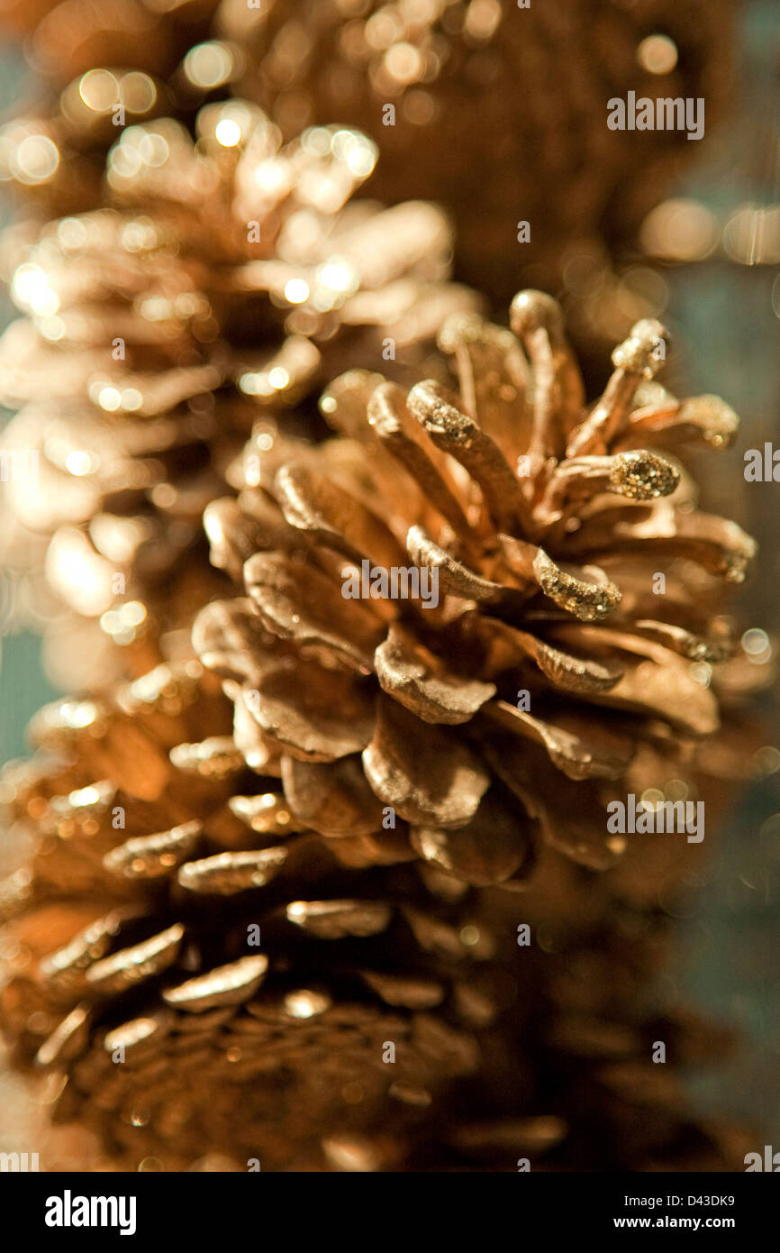 Glittering pine cones - Stock Image