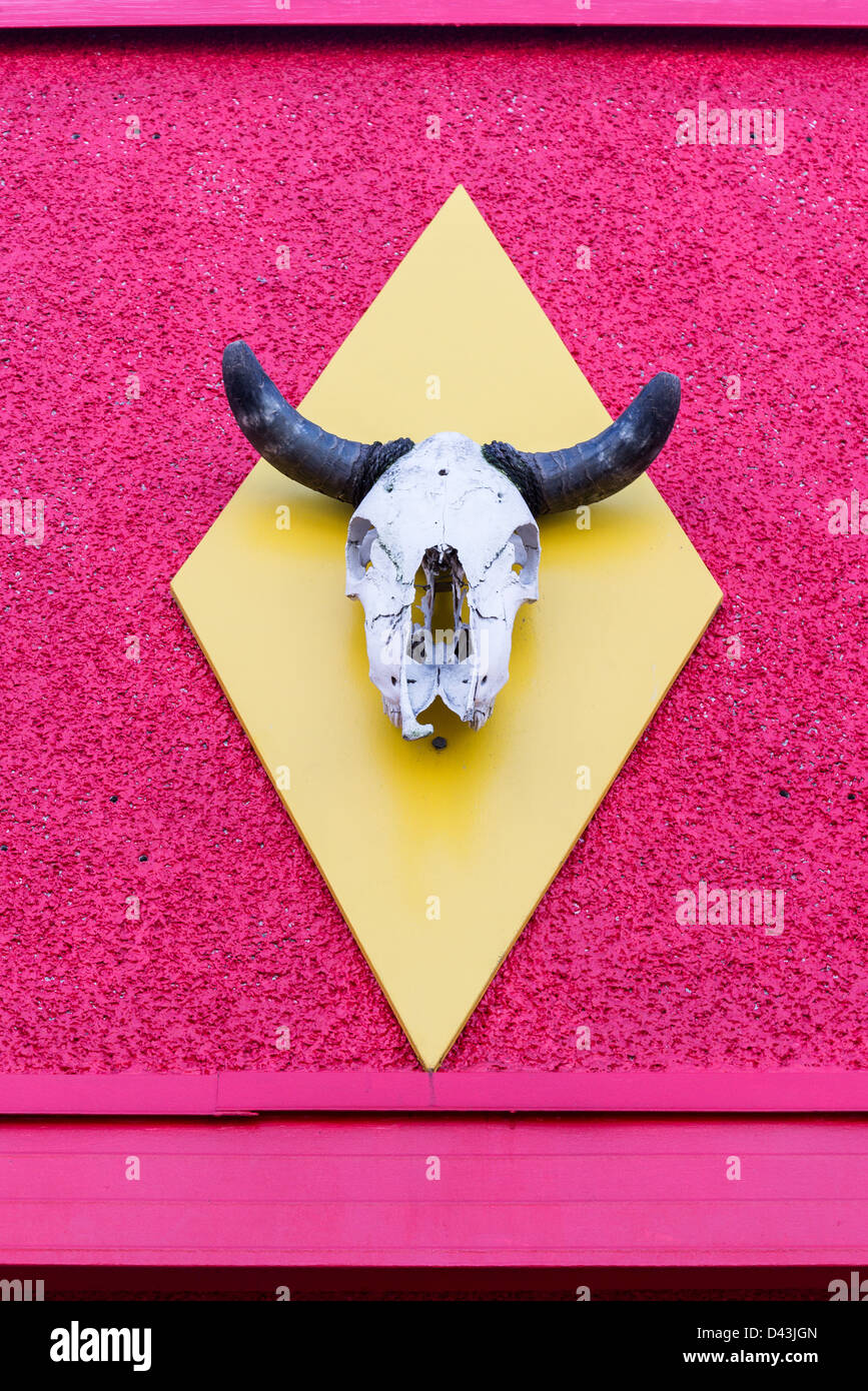 Cow Skull On Wall Stock Photos & Cow Skull On Wall Stock Images - Alamy