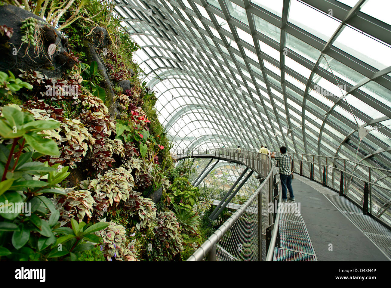 Gardens By The Bay Singapore Singapore Architect Wilkinson Eyre Stock Photo Alamy
