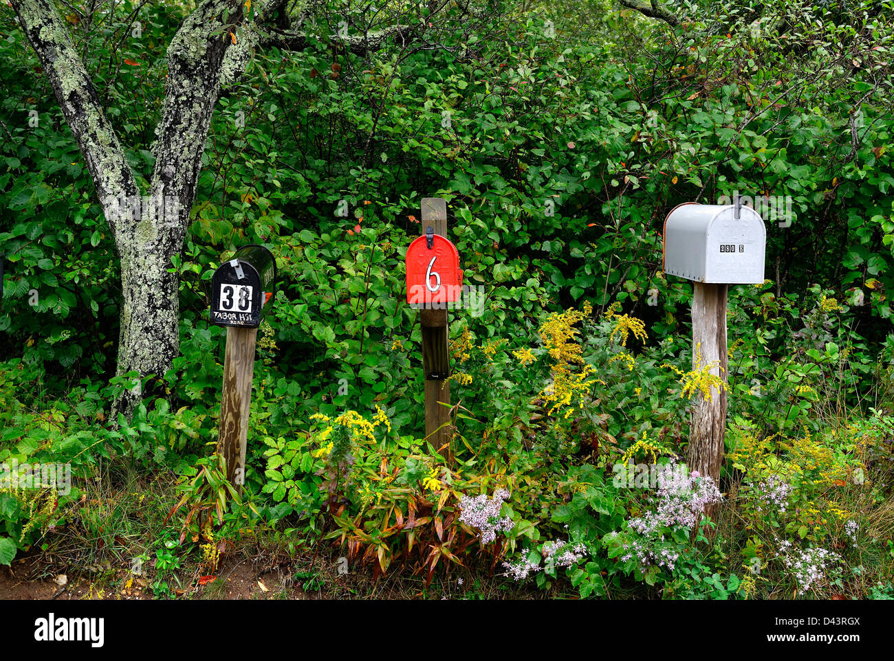 Rural mailboxes. - Stock Image
