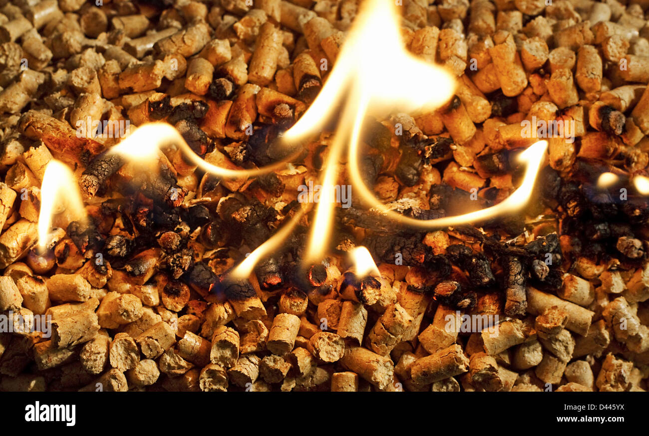 Burning biomass wood pellets used as a form of renewable energy - Stock Image