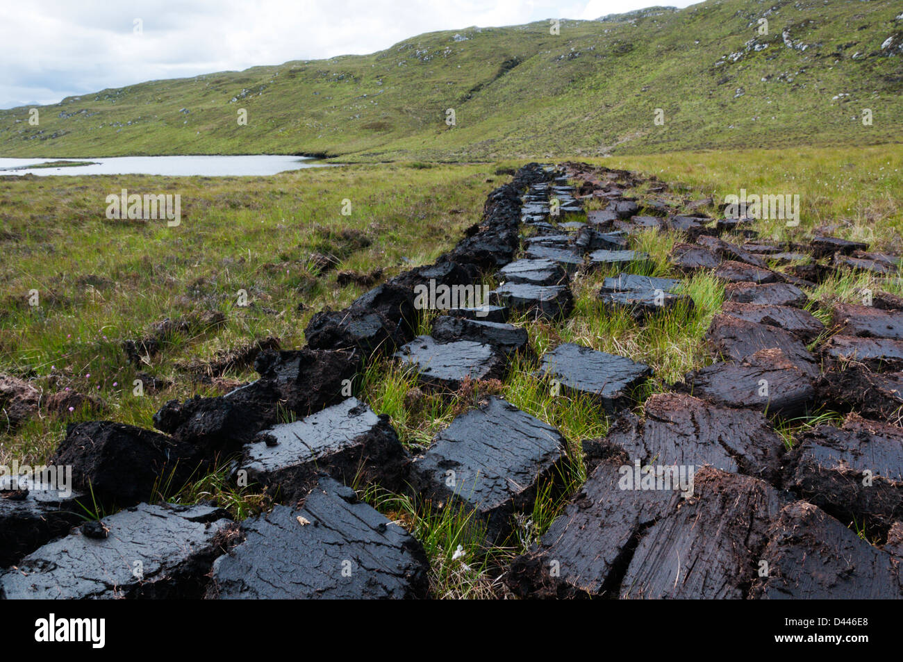 Freshly cut peat turves laid out on moorland to dry in west Lewis, Outer Hebrides. - Stock Image
