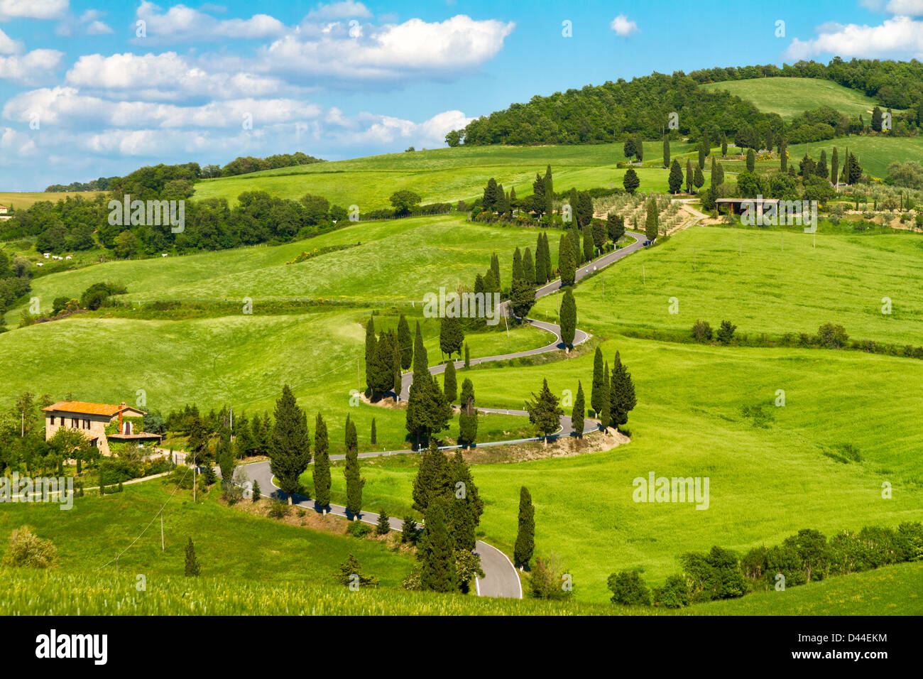 Tuscany road with cypress trees, Val d'Orcia, Italy Stock Photo