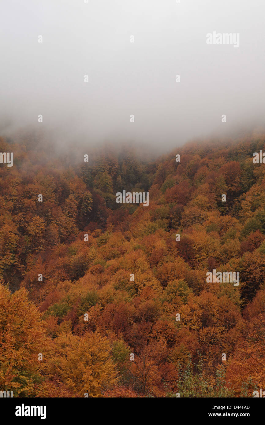 Mist rolls down the side of the Valbona valley, in Albania's Accursed Mountains (Balkans Peace Park) - Stock Image